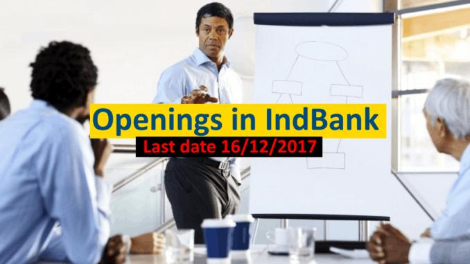 Openings in INDBank